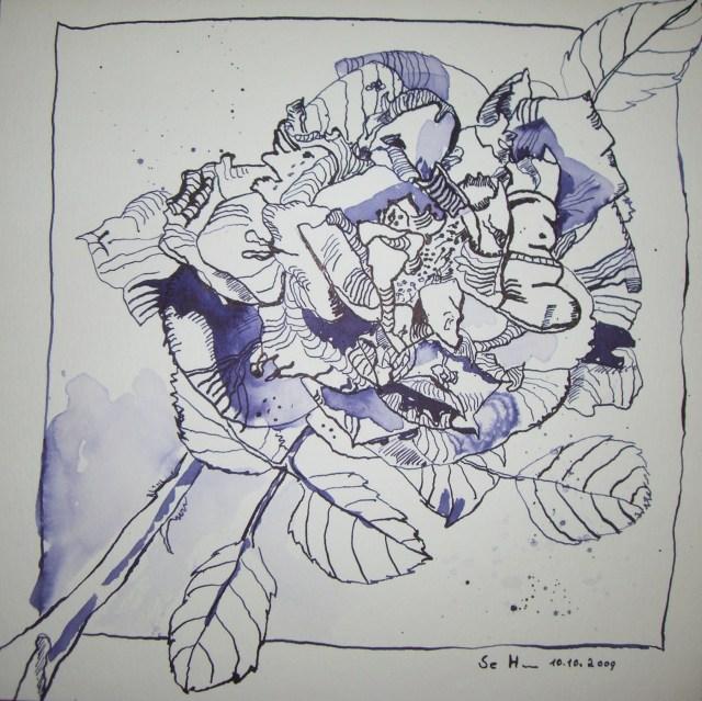 Verwelkte Rose - Zeichnung von Susanne Haun