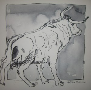 Der dunkle Stier von Cuailnge - Zeichnung von Susanne Haun - 25 x 25 cm - Tusche auf Bütten