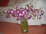 Orchideenstrauß - Foto von Susanne Haun