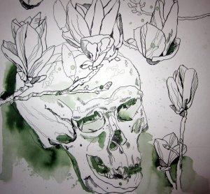 Schädel - 40 x 40 cm - Zeichnung von Susanne Haun