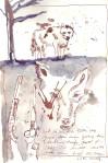 Und sie erlegten zwei von Ihnen, dem einen ging ein Flintenschuss durch den Hals, … - Zeichnung von Susanne Haun - 30 x 20 cm - Tusche auf Skizzenpapier