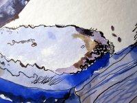 Entstehung einzelne Lavendelblüte Ausschnitt 3 mit Größenvergleich von Susanne Haun