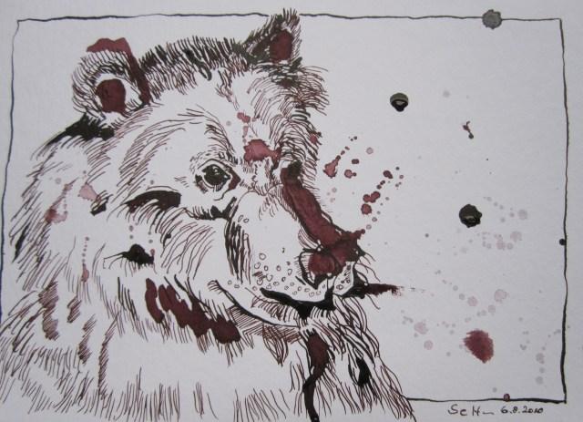 Bär Susie - Zeichnung von Susanne Haun - 17 x 22 cm - Tusche auf Bütten