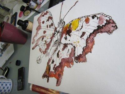 Entstehung Schmetterling von Susanne Haun
