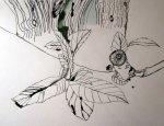 Entstehung Olivenblätter auf Zeichnung von Susanne Haun 1000 x 40 cm
