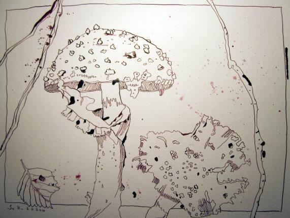 Fliegenpilz - Zeichnung von Susanne Haun - 30 x 40 cm - Tusche auf Bütten