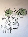 Ich beginne den Totenschädel zu zeichnen - dabei habe ich alle Totenschädel im Kopf, die ich je Zeichnete - Zeichnung von Susanne Haun