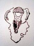 Entstehung Orchidee - Zeichnung von Susanne Haun