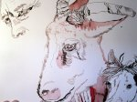 """Die Ziege - Ausschnitt Zeichnung """"Athena"""" von Susanne Haun"""