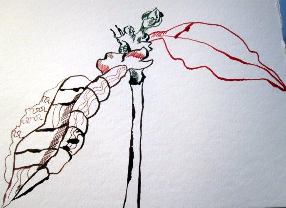 Entstehung Weihnachtsstern - Zeichnung von Susanne Haun