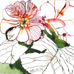 Die Blätter gefallen mir sehr gut - Zeichnung von Susanne Haun