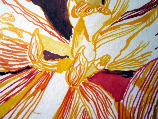 Ich mag die vielen Linien aus denen sich meine Zeichnung zusammensetzt - Susanne Haun