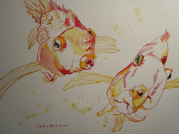 Zwei Goldfische im Aquarium - Zeichnung von Susanne Haun - 24 x 32 cm - Tusche auf Bütten