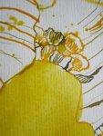 Fläche stößt an Linie - Ausschnitt Winterlinge von Susanne Haun