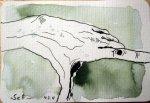 Linke Hand - Zeichnung von Susanne Haun- 10 x 15 cm - Tusche auf Hahnemühle Postkarte