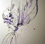 Um die Staubblätter entstehen die Blütenblätter - Susanne Haun