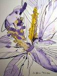 Krokusse - Zeichnung von Susanne Haun - 25 x 25 cm - Tusche auf Bütten