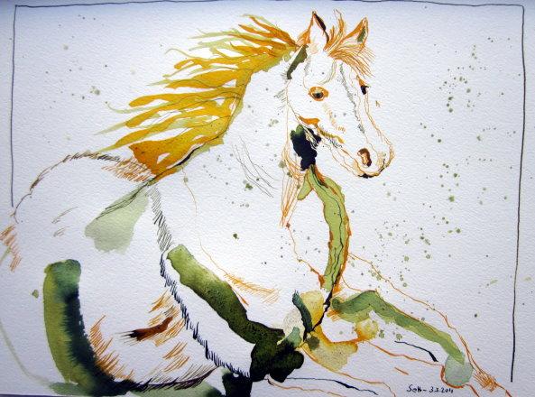 Pferd - Zeichnung von Susanne Haun 24 x 32 cm - Tusche auf Bütten