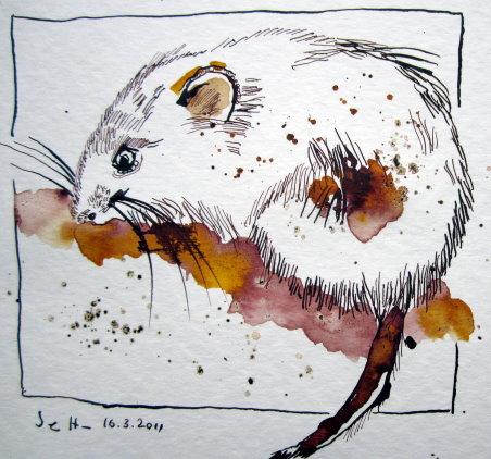 Fred die Maus - Zeichnung von Susanne Haun - 20 x 20 cm - Tusche auf Bütten