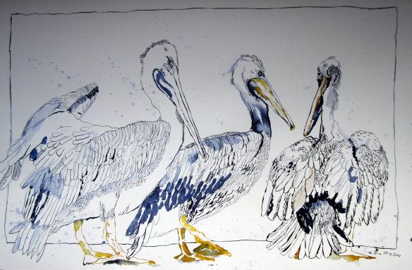 Drei Pelikane - Zeichnung von Susanne Haun - 30 x 40 cm - Tusche auf Hahnemühle Bütten