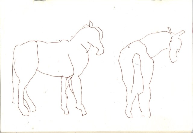 Skizze Pferde von Susanne Haun