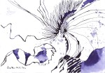 Schwertlilie - Zeichnung von Susanne Haun - 17 x 24 cm - Hahnemühle Burgund 250 g/m²