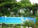 Der Swimmingpool ist umrankt von Pflanzen - Foto von Susanne Haun