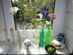 Mein Küchenfenster - Foto von Susanne Haun