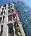 In der Bastionstr. gerade über vom Verwaltungsgericht - Foto von Susanne Haun