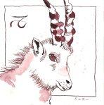 Steinbock Vers. 2 - Zeichnung von Susanne Haun - 20 x 20 cm - Tusche auf Bütten