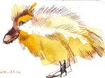 Entenkind 2 - Zeichnung von Susanne Haun - 10 x 15 cm - Tusche auf Bütten