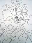 Kohlrabi Skizze2 von Susanne Haun
