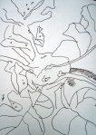 Kohlrabi Skizze 1 von Susanne Haun