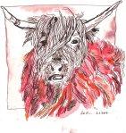 Stier Version 1 - Zeichnung von Susanne Haun - 20 x 20 cm - Tusche auf Bütten