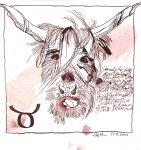 Stier Version 2 - Zeichnung von Susanne Haun - 20 x 20 cm - Tusche auf Bütten