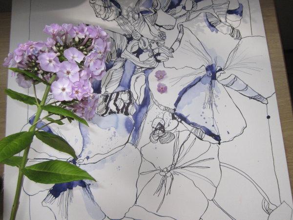 Ob die noch geschlossenen Blüten nach der Tortur, mir Model zu stehen, noch aufgehen? - Foto von Susanne Haun