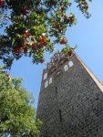 Turm der Marienkirche in Angermünde - Foto von Susanne Haun