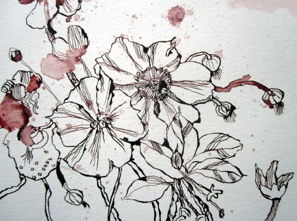 Blumen aus Luise Henriettes Garten entstehen im Vordergrund der Zeichnung von Susanne Haun