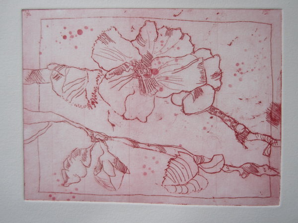 Wildrosen karminrot - Radierung von Susanne Haun - 15 x 20 cm - Strichätzung