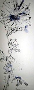 Stockrose Nr. 2 - Zeichnung von Susanne Haun - Tusche auf Hahnemühle Britania - 50 x 20 cm 300 g/m²