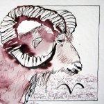 Widder - Zeichnung von Susanne Haun - 20 x 20 cm - Tusche auf Bütten