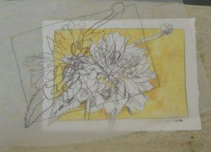 Eine Zeichnung ist die Grundlage meiner Strichätzung - Foto von Susanne Haun