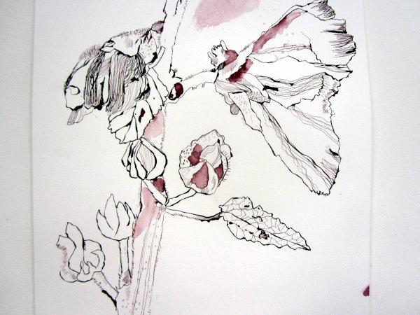 Ausschnitt Stockrose - Zeichnung von Susanne Haun - 200 x 40 cm - Tusche auf Bütten