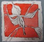 Blüte 3 zinnoberrot koloriert - Zeichnung von Susanne Haun - Tusche auf Bütten - 10 x 10 cm