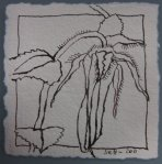 Blüte 1 - Zeichnung von Susanne Haun - Tusche auf Bütten - 10 x 10 cm