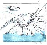 Krebs - Zeichnung von Susanne Haun - 20 x 20 cm - Tusche auf Bütten