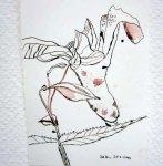 Springkraut - Zeichnung von Susanne Haun - 22 x 17 cm - Tusche auf Hahnemühle Burgung