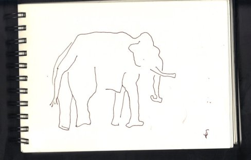 Elefant - Skizze von Susanne Haun