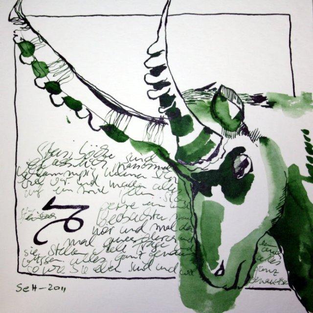Steinbock - Zeichnung von Susanne Haun - 20 x 20 cm - Tusche auf Bütten