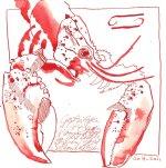Krebs - Zeichnung von Susanne Haun - Tusche auf Bütten - 20 x 20 cm